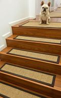 Dog-stair-treads